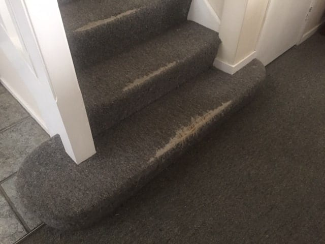Stairs with warn out carpet